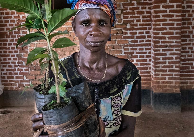 DRC PEA photo